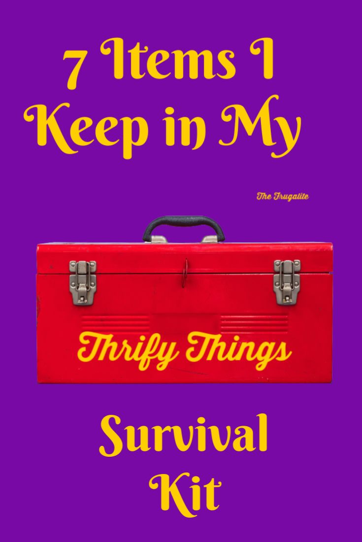 7 Items I Keep in My Thrifty Things Survival Kit