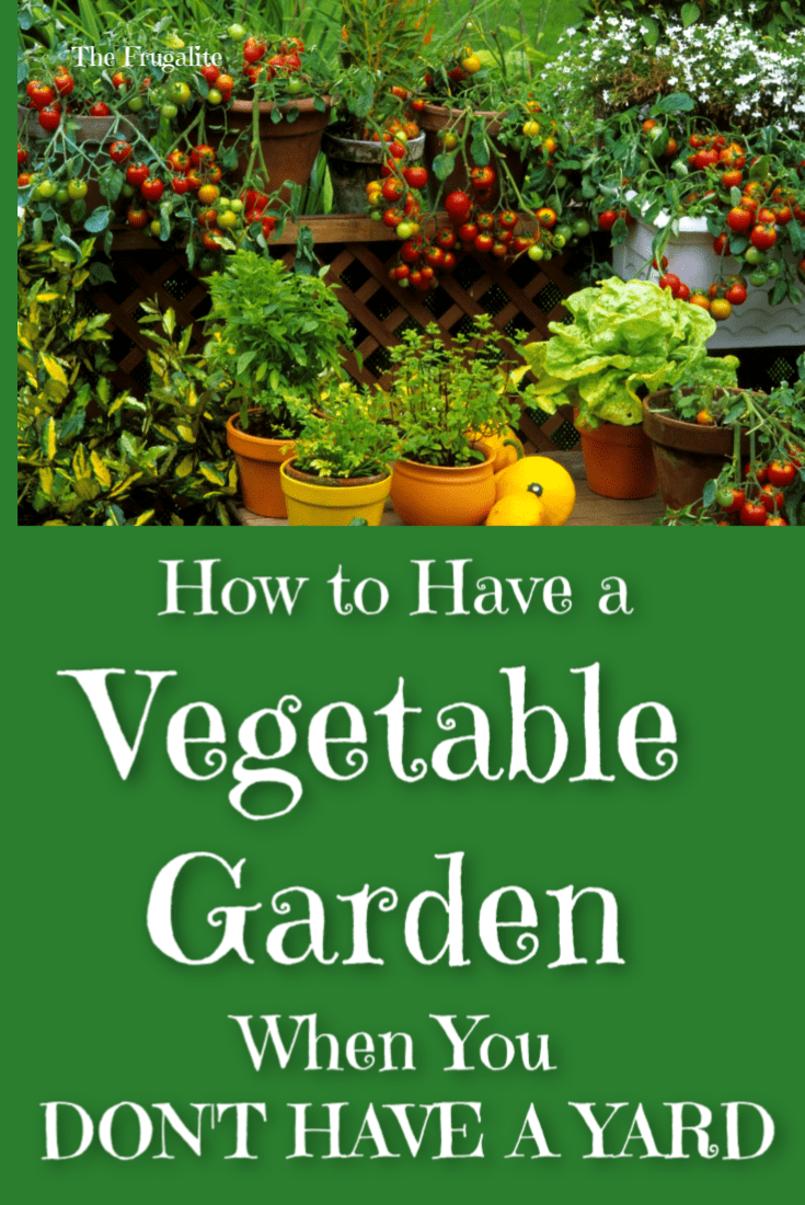 How to Have a Vegetable Garden When You Don\'t Have a Yard