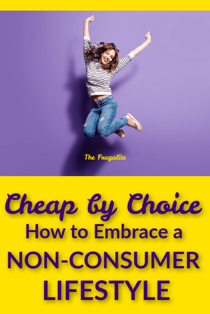 Cheap by Choice: How to Embrace a Non-Consumer Lifestyle